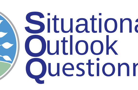 Situational Outlook Questionnaire